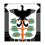 Hamar kommunevåpen